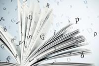 Bibliotekar til DBC's Datadivision